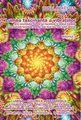 Lumea fascinantă a vibraţiilor. Vol. 3. Editura Ganesha